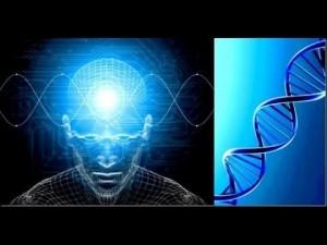 Trouble bipolaire  découvertes génétiques qui éclairent des comportements de la manie